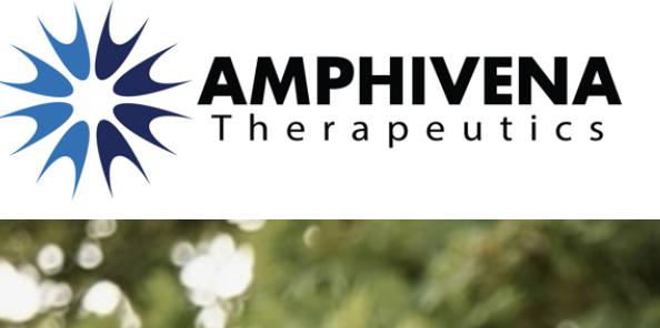 Amphivena